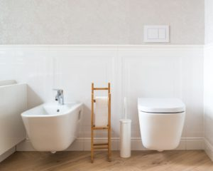 A Bidet and Toilet