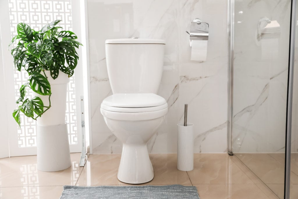 Small toilet in bathroom with marble tile wall being reviewed
