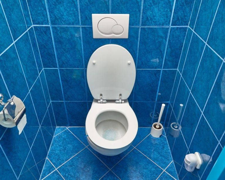 Toilet with Padded toilet Seat