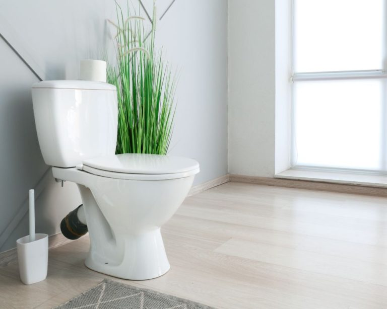 Best Pressure Assist Toilet