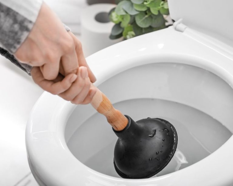 Woman Unclogging a toilet