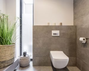 Best Wall Mounted Toilets Reviews