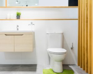 Best Short Depth Toilets 24-25in