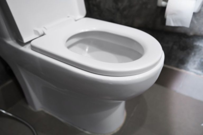 How Much Does a Toilet Weigh