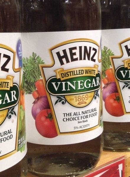 vinegar for cleaning toilet