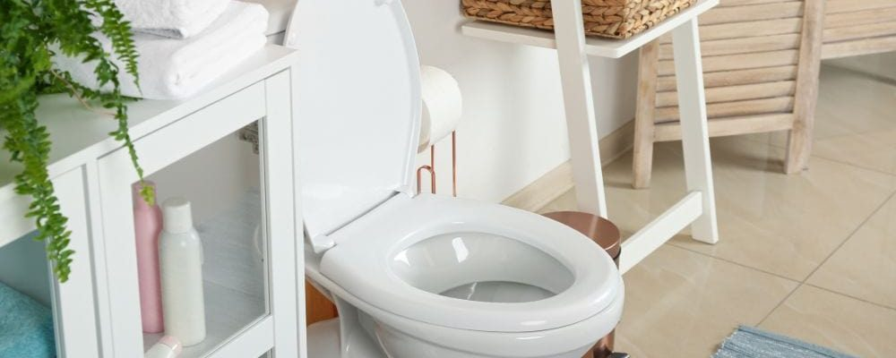 Best 10-inch rough-in toilet reviews