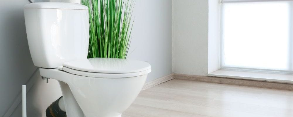 Best Pressure Assist Toilet