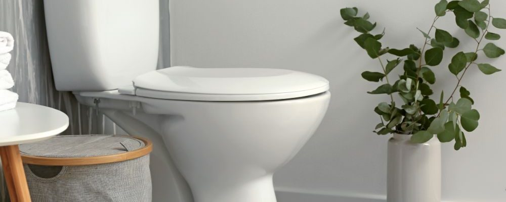 Toilet in Bathroom With Low Water Use
