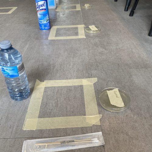 Different cleaners lined up on the floor for bacteria test
