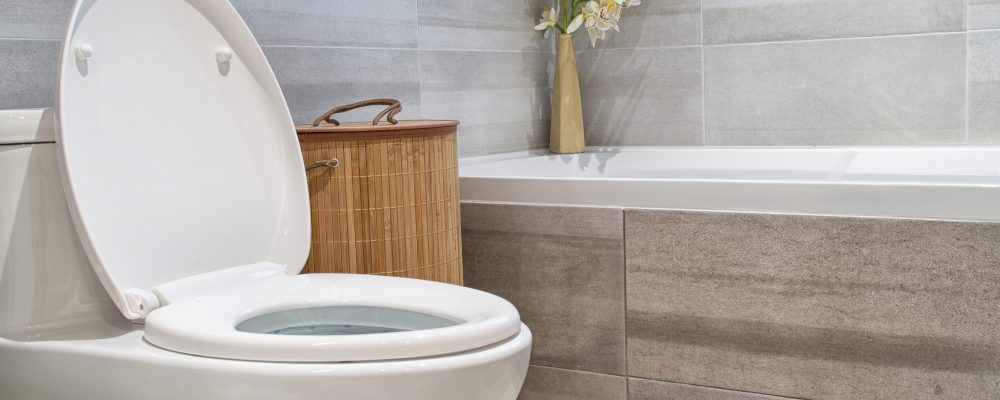 Two Piece Toilet With Lid Open in Modern Luxury House